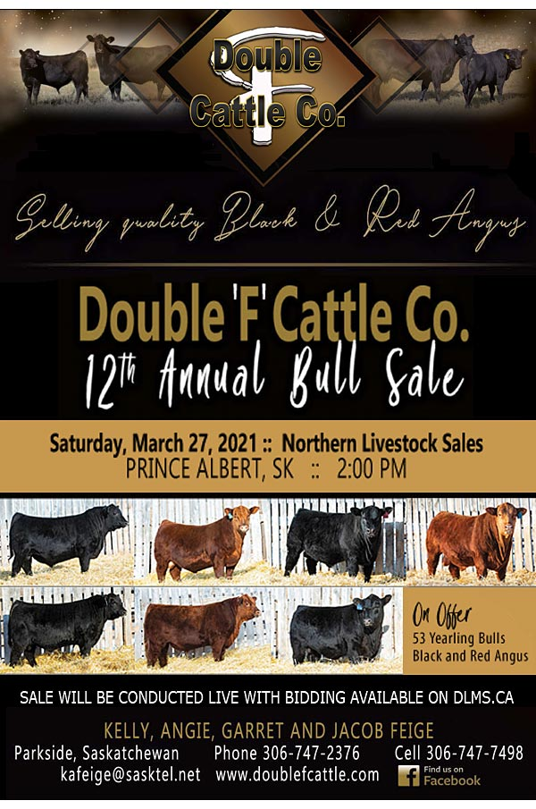 Double F Cattle Co.